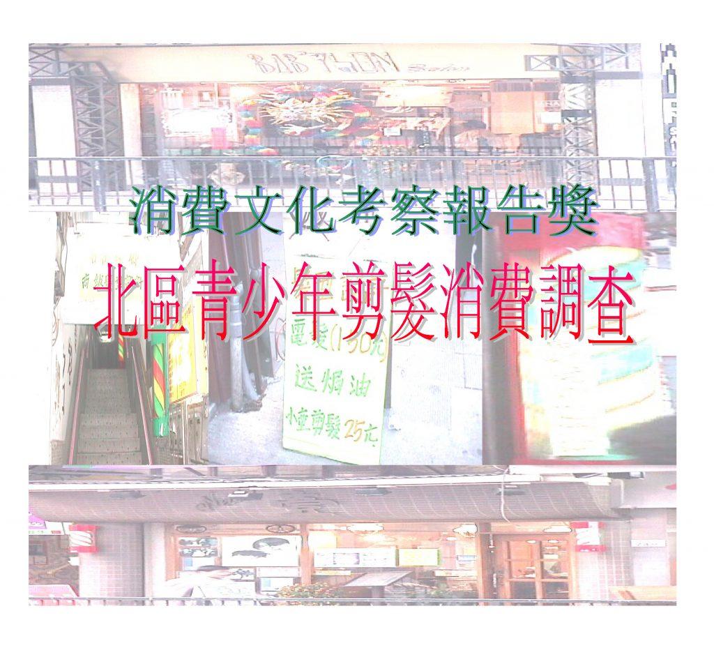 《北區青少年剪髮消費調查》封面